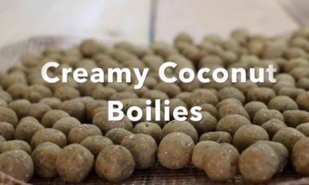 Creamy Coconut Boilies