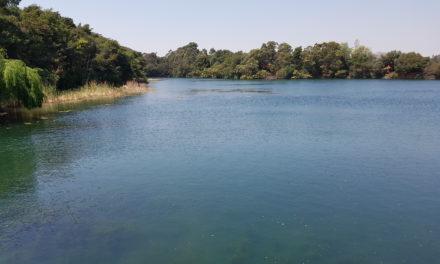 Aqua Paradiso