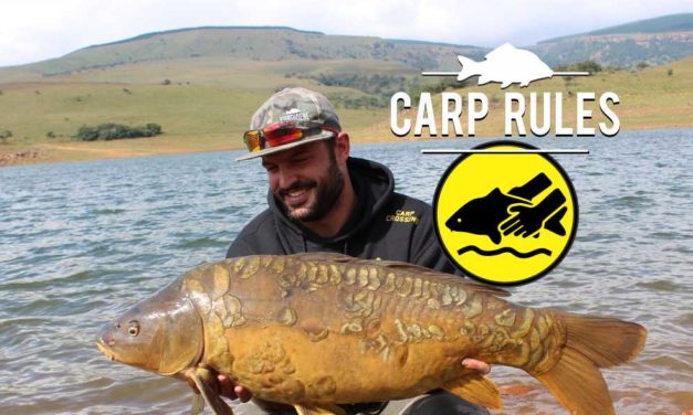 Carp Rules